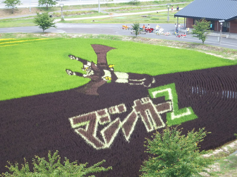 tanbo japanese rice field art (6)