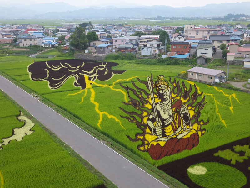 tanbo japanese rice field art 8 Speed Paintings Made from Various Foods and Drinks