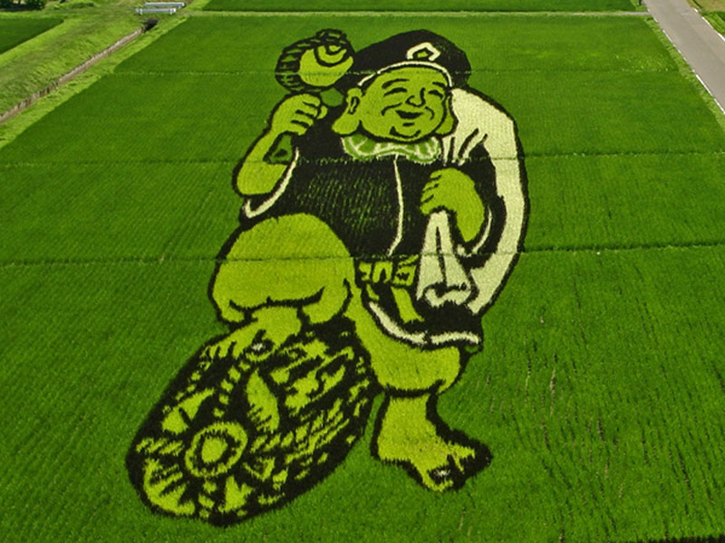 tanbo japanese rice field art (9)