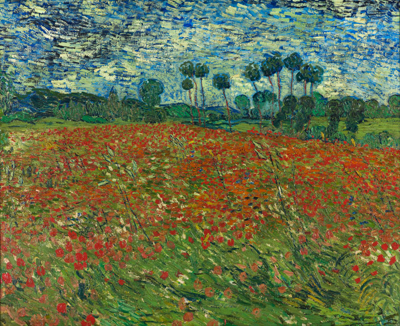 vincent van gogh poppy field 1890 Incredibly Detailed Close Ups of Van Goghs Masterpieces