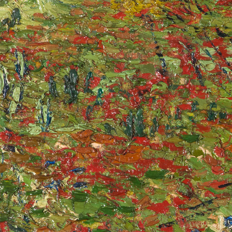 vincent van gogh poppy field close up5 Extremely Detailed Close Ups of Van Goghs Masterpieces