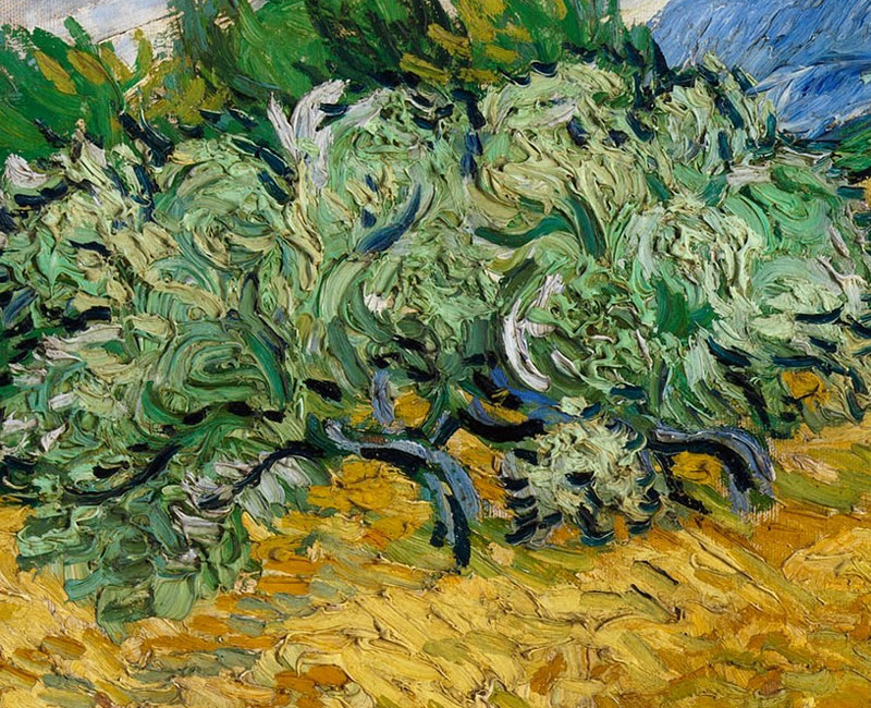 Resultado de imagem para Os Ciprestes, 1889 van Gogh