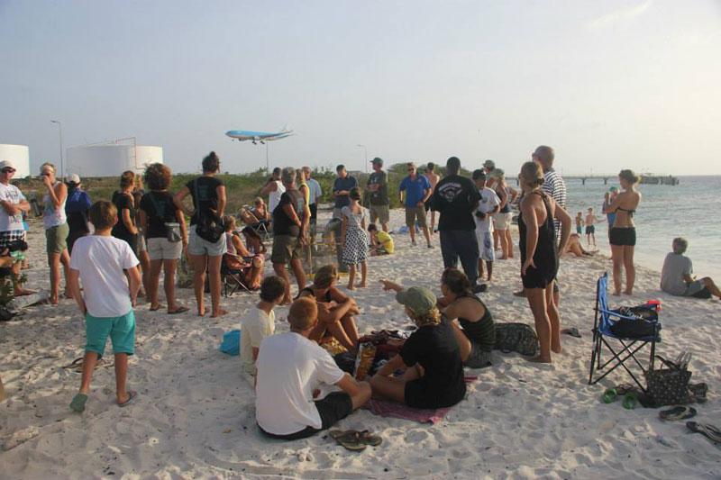 volunteers help guide loggerhead sea turtle hatchlings to sea (3)