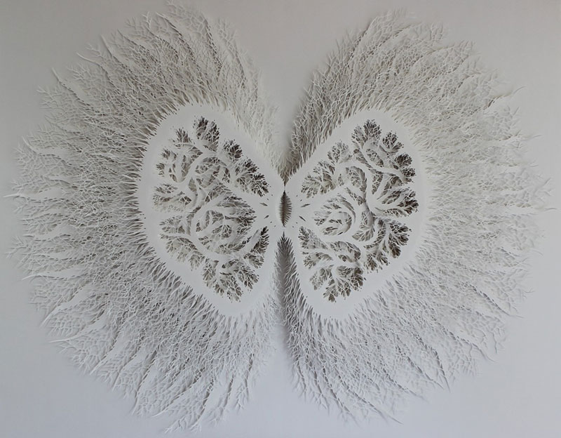 hand cut paper art rogan brown (15)