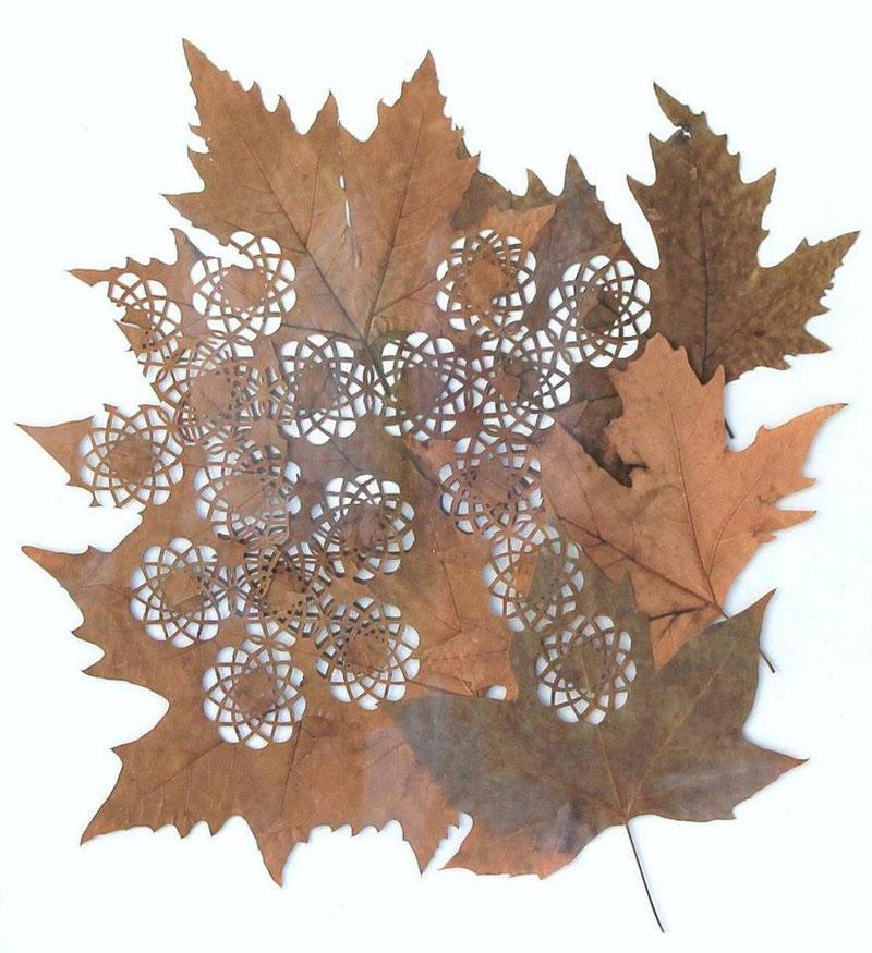 leaf cutting art lorenzo duran (1)