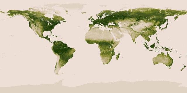 map-of-vegetation-on-earth