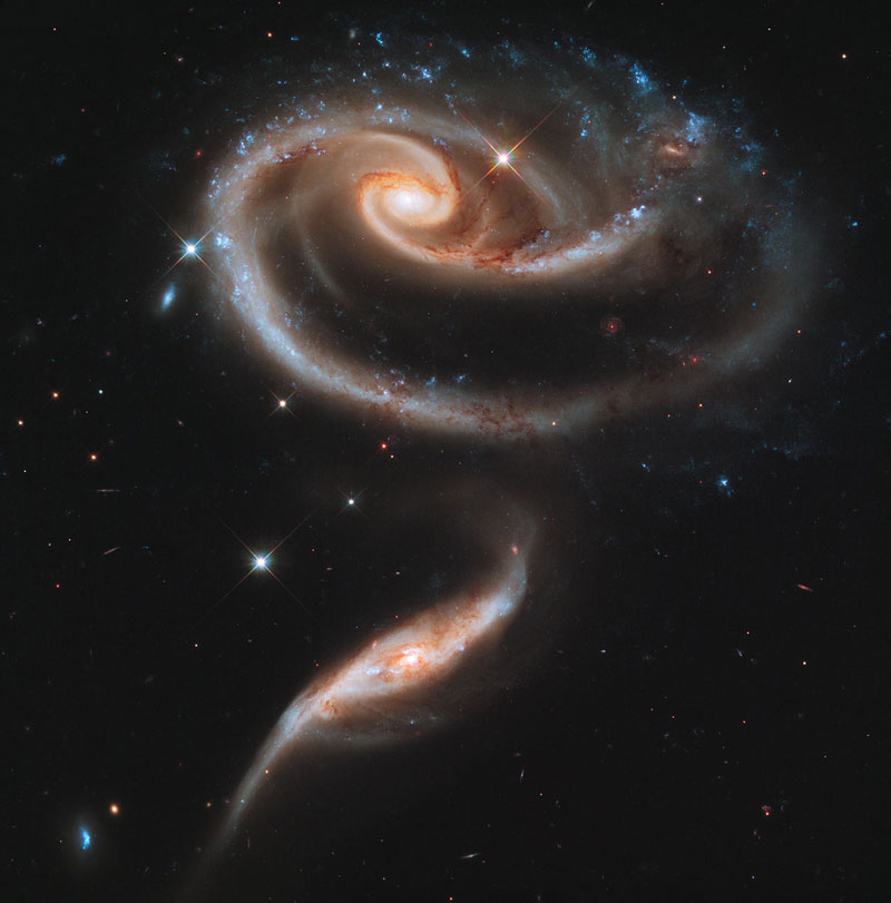 rose made of galaxies Picture of the Day: A Rose Made of Galaxies