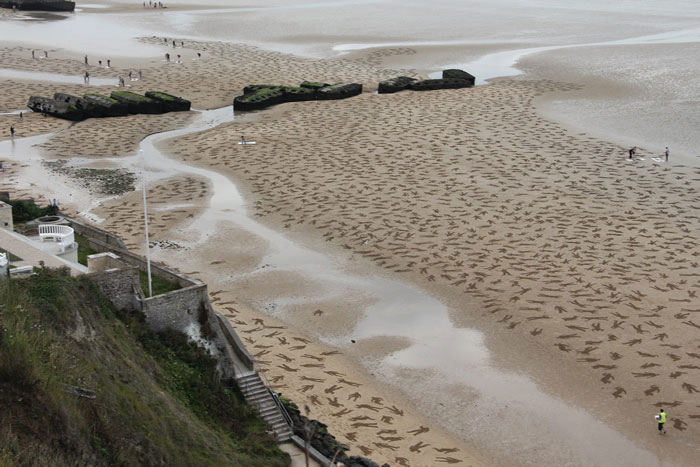 fallen soldiers etched into sand normandy beach peace day land art project (9)