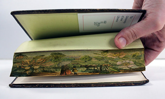 fore-edge paintings gif