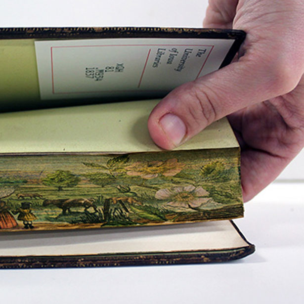 40 hidden artworks painted on the edges of books «twistedsifter