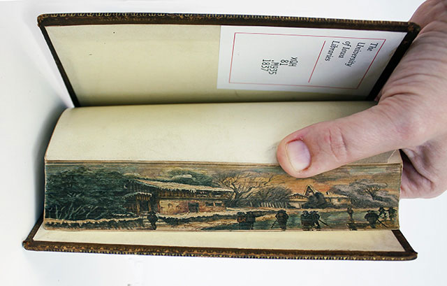 hidden artworks on the edges of books gif