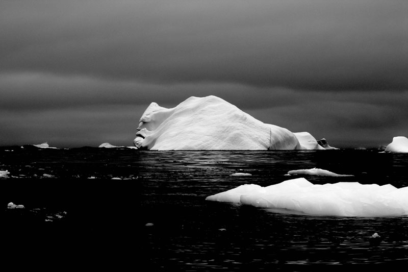 Picture of the Day: The Face of an Iceberg