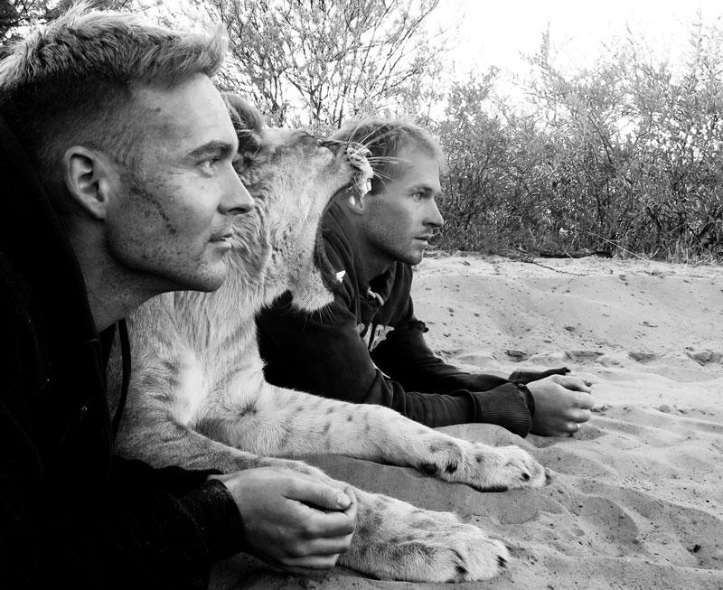lion whisperers modisa botswana by nicolai frederk bonnen rossen (10)