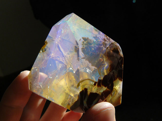 Finding Opals Oregon