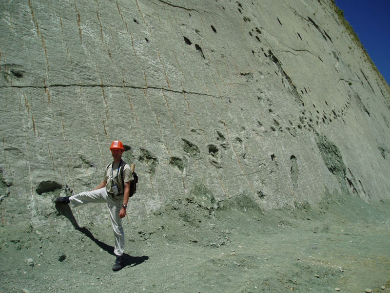 cal orko wall of dinosaur footprints sucre bolivia (2)