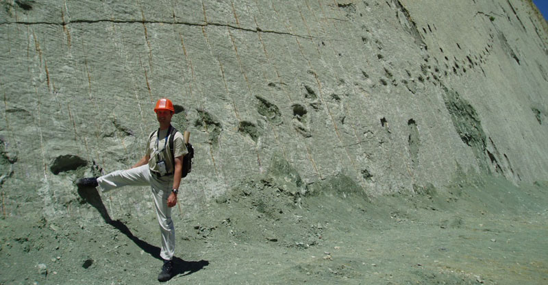 This 300 ft Wall in Bolivia has over 5000 DinosaurFootprints
