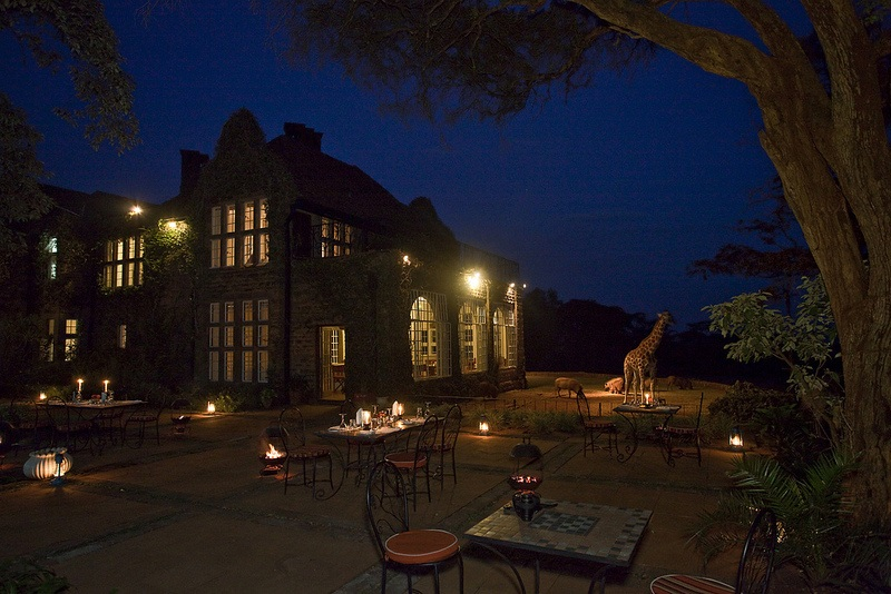 giraffe manor hotel nairobi kenya africa safari (13)