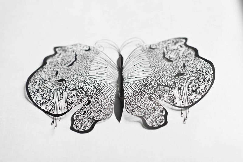 paper art with scissors by hina aoyama 6 The Art of Cutting Feathers by Chris Maynard
