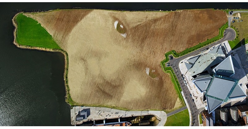 11 Acre Land Art Portrait is Largest Ever in theUK