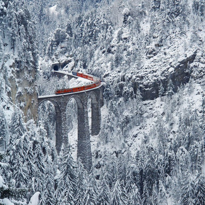 rhaetian railway albula bernina glacier express bernina express unesco 13 Theres a Canopy Walkway in Cape Town that Lets You Walk Above the Trees