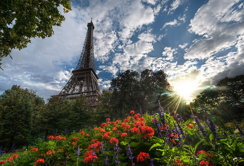 Picture of the Day: Unique View of the EiffelTower