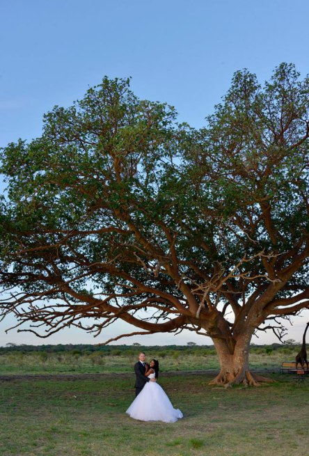 african safari wedding (13)