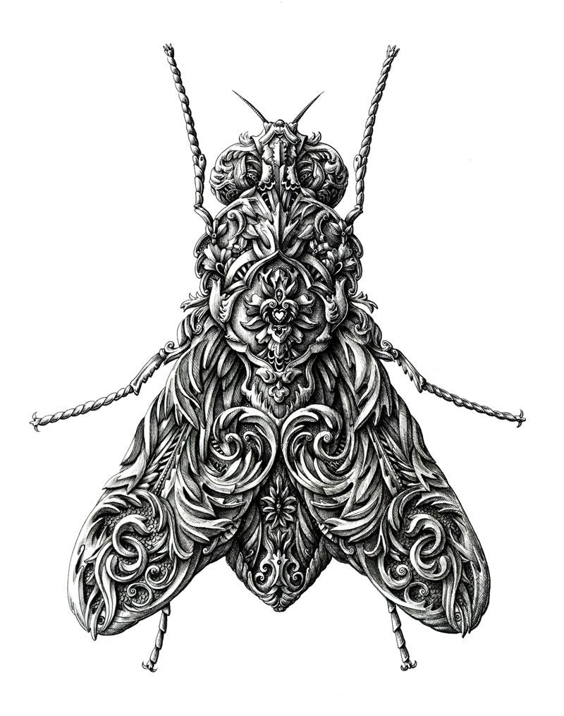 Alex Konahin ink illustrations (10)