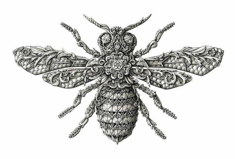 Alex Konahin ink illustrations (17)