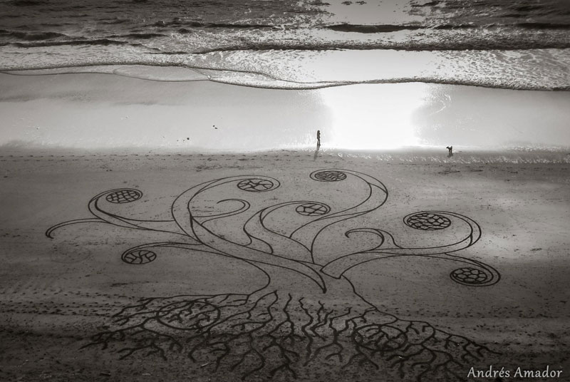 beach sand art with a by rake andres amador (14)