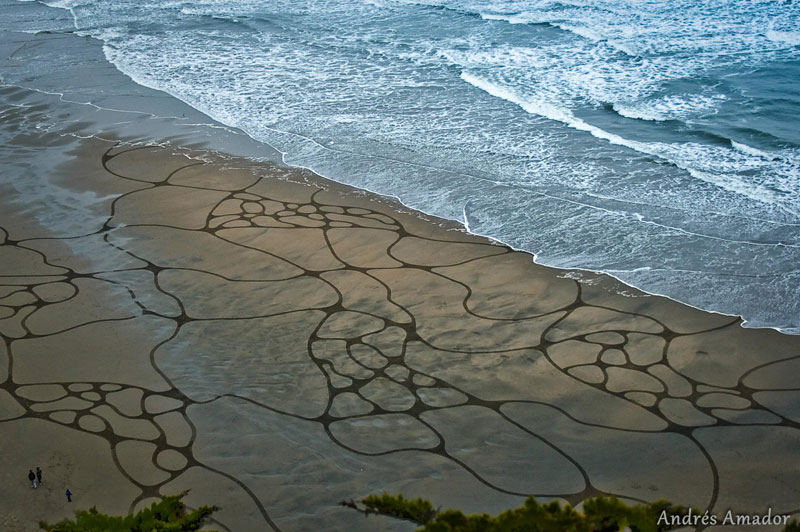 beach sand art with a by rake andres amador (5)