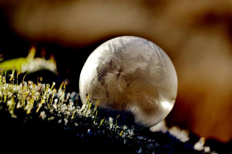 close ups of frozen soap bubbles angela kelly macro (1)
