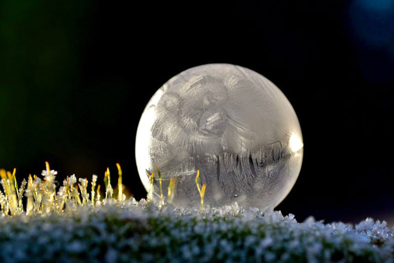 close ups of frozen soap bubbles angela kelly macro (9)