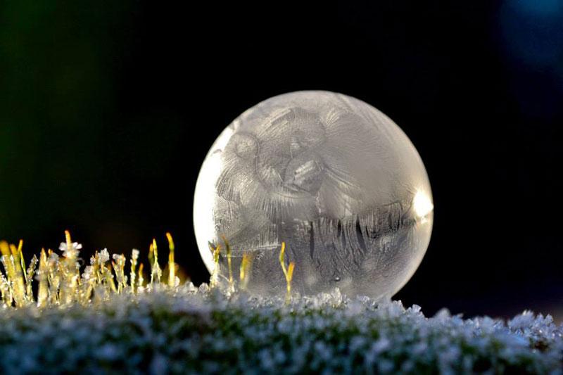 close ups of frozen soap bubbles angela kelly macro (9)