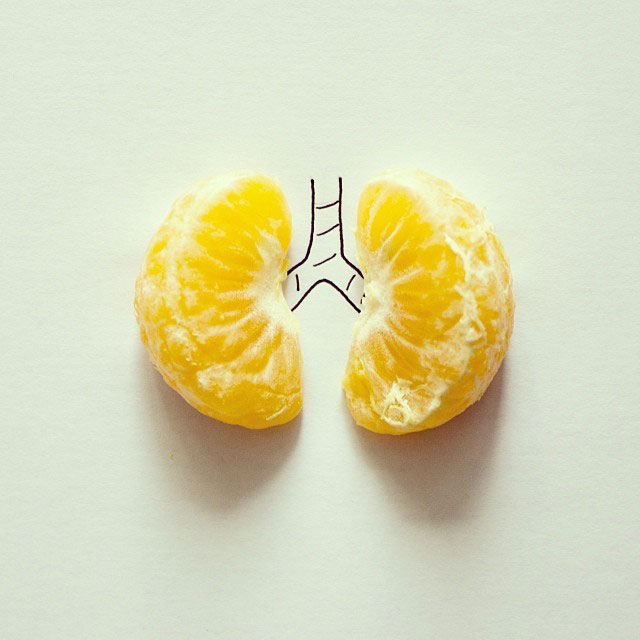 doodles that incorporate everday objects by javier perez cintascotch on instagram (13)