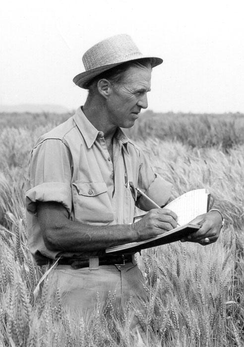 Norman-Borlaug