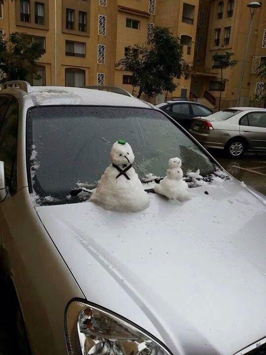 snow in cairo egypt december 2013 (3)