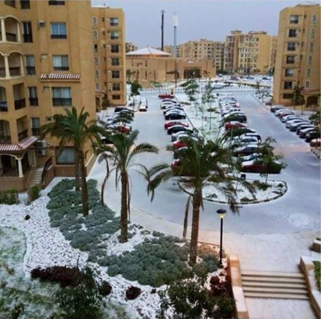 snow in cairo egypt december 2013 (4)