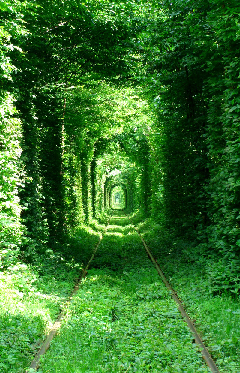 tunnel-of-love-green-mile-klevan-rivne-ukraine