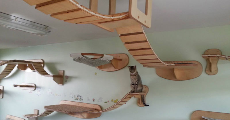 This Furniture Gives New Meaning to the Term 'CeilingCat'