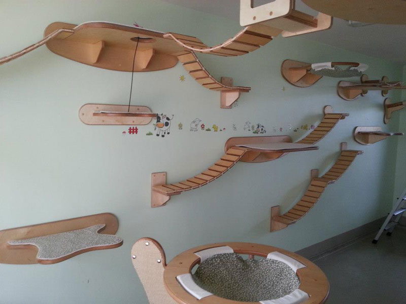 this furniture gives new meaning to the term ceiling cat twistedsifter. Black Bedroom Furniture Sets. Home Design Ideas