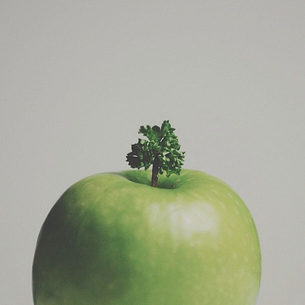 Creative Photos of Everyday Objects by Brock Davis (3)