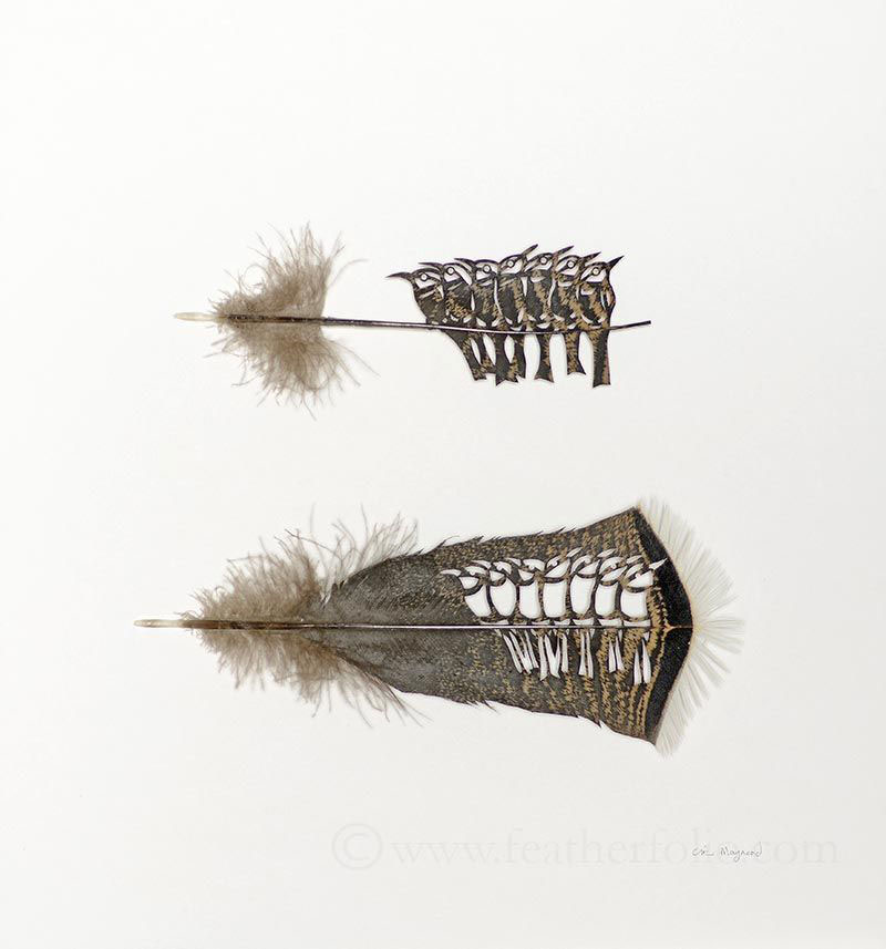 feather cutting art by chris maynard featherfolio (3)