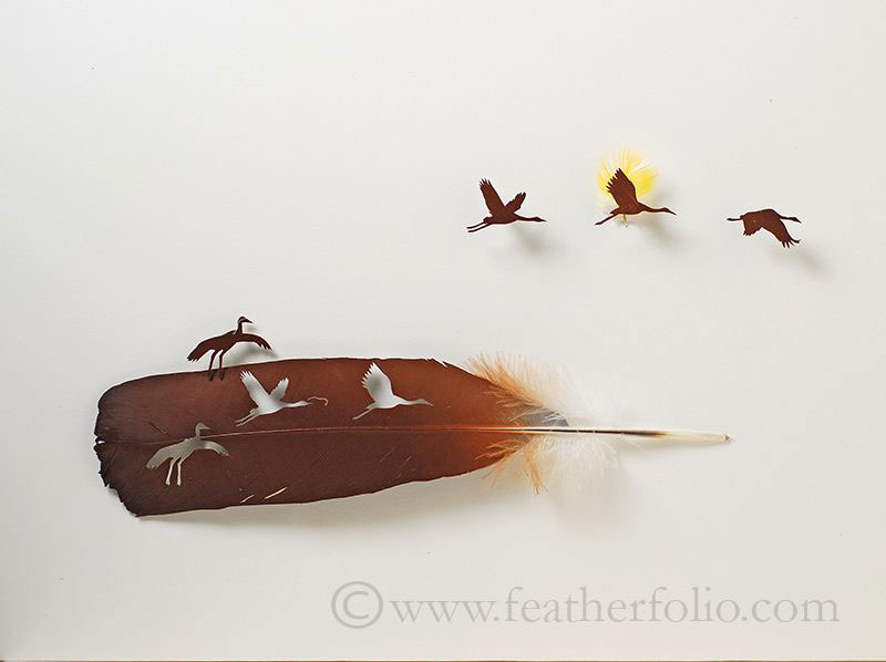 feather cutting art by chris maynard featherfolio (5)