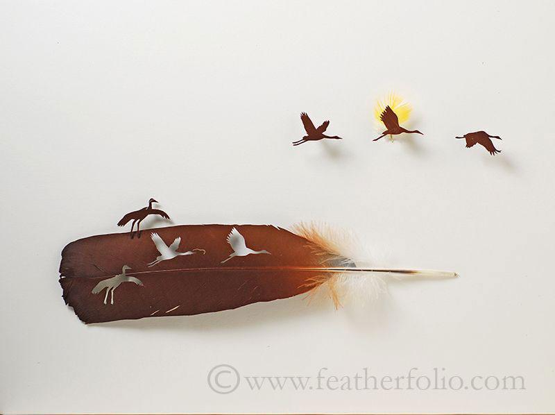 feather cutting art by chris maynard featherfolio (5)