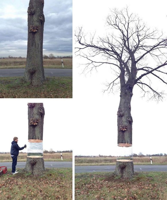 levitating tree street art illusion by daniel siering and mario shu 3 These Abstract Street Artworks Look Like Portals to Another Dimension