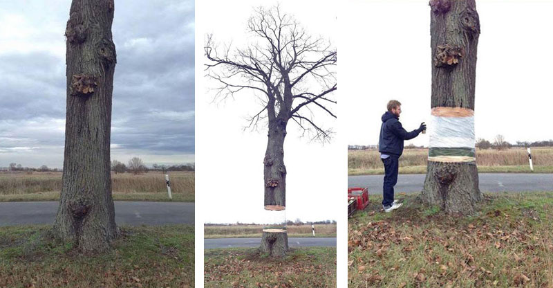 Artists Levitate Tree Using Foil and SprayPaint