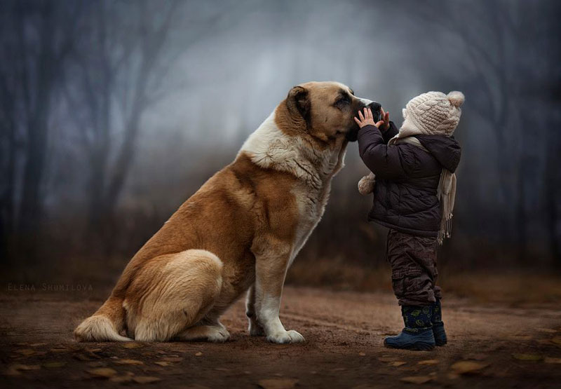 mother takes touching portraits of sons with animals elena shumilova 6 These Two are Winning the Internet in their Sleep