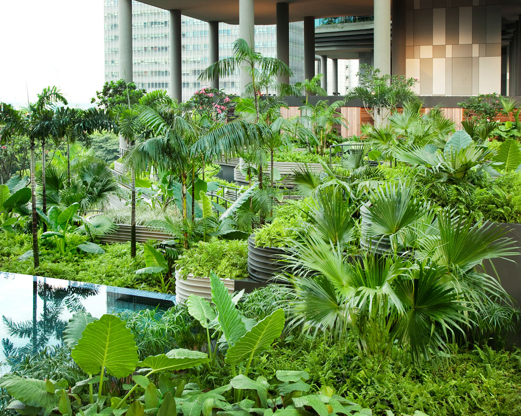 this hotel in singapore has the coolest sky gardens ever twistedsifter. Black Bedroom Furniture Sets. Home Design Ideas