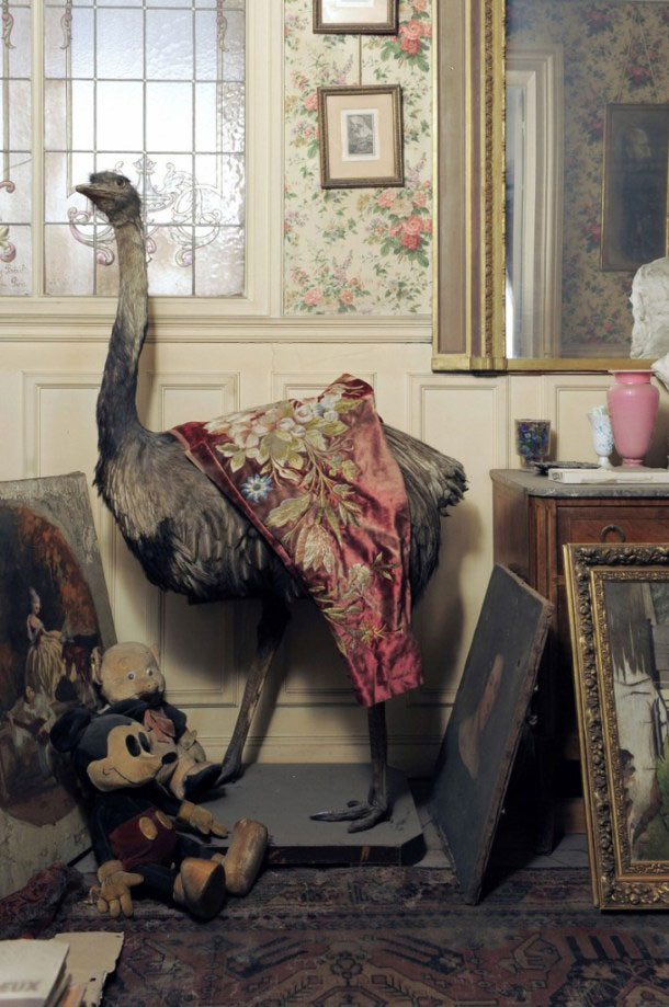 perfectly preserved paris apartment discovered after 70 years with valuables and paintings (3)
