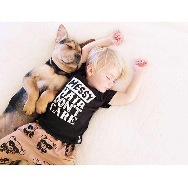 toddle naps with puppy theo and beau instagram (14)